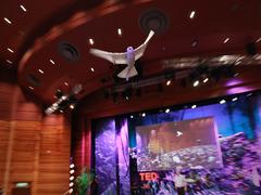 Markus Fischer: A robot that flies like a bird