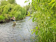 Rob Harmon: How to keep rivers and streams flowing