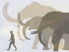 Hendrik Poinar: Bring back the woolly mammoth!
