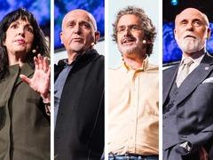 The interspecies internet? An idea in progress