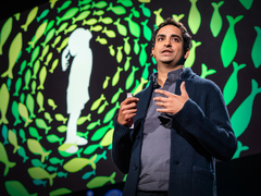 Prosanta Chakrabarty: Four billion years of evolution in six minutes
