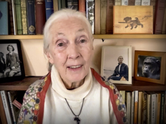 Jane Goodall: Every day you live, you impact the planet
