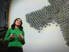 Radhika Nagpal: What intelligent machines can learn from a school of fish