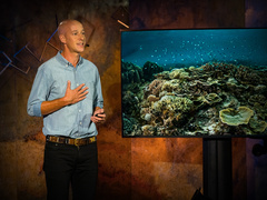 Alasdair Harris: How a handful of fishing villages sparked a marine conservation revolution