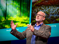 Tim Flannery: Can seaweed help curb global warming?